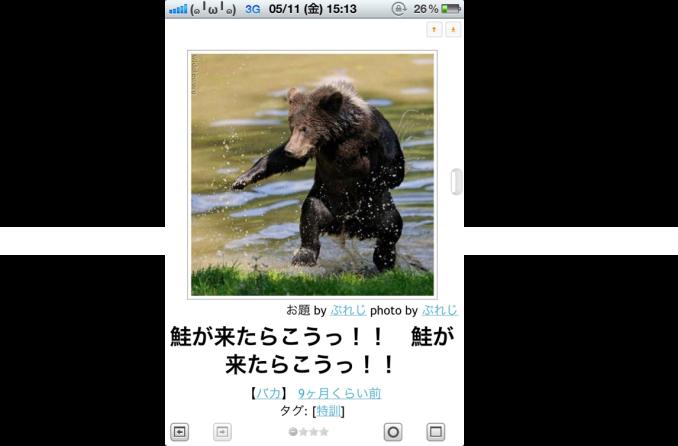 【臨時投稿】スキマ時間活用~鮭が来たらこうっ!